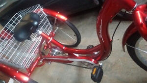 NEW ADULT TRIKE - Merry Christmas!!