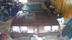 1981 firebird project for sale or trade