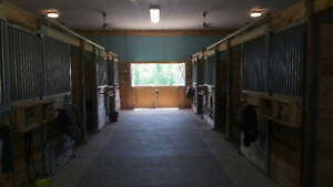 2 stalls available - FULL BOARDING - Private, friendly barn