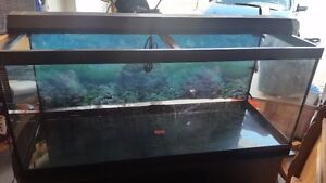 75 Gallon Tank and Stand