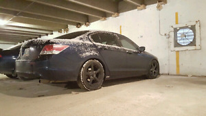 Honda Accord lowered on eibach