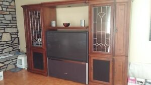 Entertainment/Wall Unit