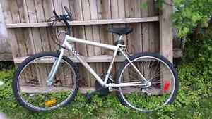 16' adult 10 speed pedal bike