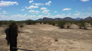 Amazing 320 Acres Of Horse Allowed/Mobile Home Allowed Land!!