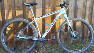 Cannodale 29er single speed