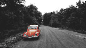 Original paint Arizona Beetle