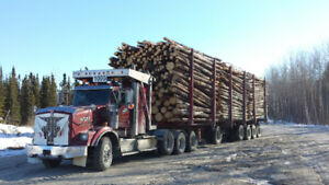 Camion Kenworth, forestier, tri-axel, 2010