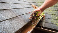 Gutter Cleaning, Siding and soffit cleaning.