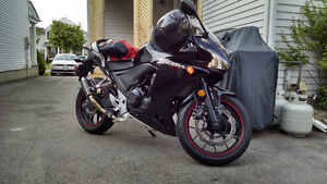 2014 CBR500R ABS - Best starter bike Kitchener / Waterloo Kitchener Area image 5
