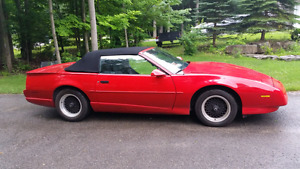 1992 Firebird Trans-Am convertible