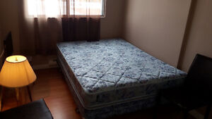 Looking for A Respecful Roommate