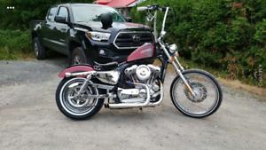 Harley Davidson Sporster 1200 seventy two     (xl1200v)