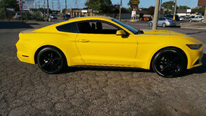 2015 Mustang Ecoboost Low KM's