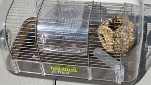 Habitrail Hamster cage with accessories