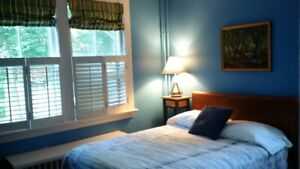 Bright room in South Park St Victorian