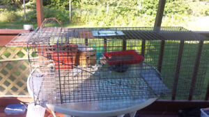 trap for catchin live animals,  40$    good for racoons,foxs,cat