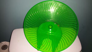 Large saucer wheel for chinchilla or rat