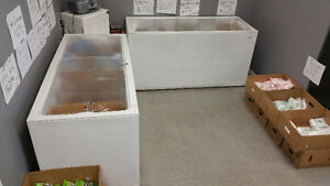 Closing Grocery Store Equipment for sale - Cambrige... Stratford Kitchener Area image 2