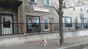 Canada K-9 All Beef Pet Foods