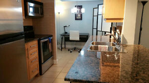 DLX 2 BR Furnished Suite - Blue Jays Way, Toronto