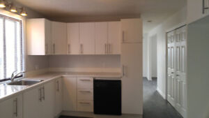 Beautiful Apartment in Old Longueuil Close to Subway Station