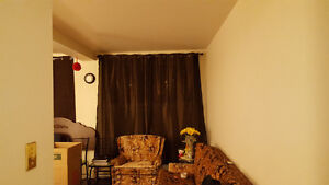 One bedroom apartment for rent (close to MUN and Avalon Mall) St. John's Newfoundland image 5
