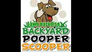 Dog poop waste clean up and mowing