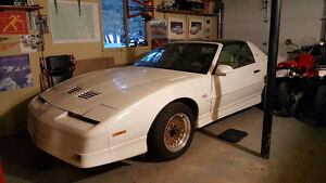 1987 GTA TRANS AM FOR SALE OR TRADE