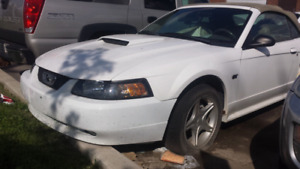 2001 Mustang GT Convertible! READ ADD! Trades welcome.