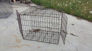 cage chien et volaille