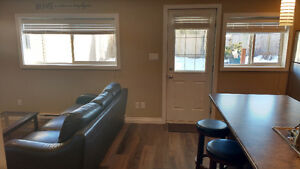 Walk out furnished 1 bed+ den basement suite  Utilities included