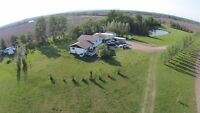 Large acreage and house for sale