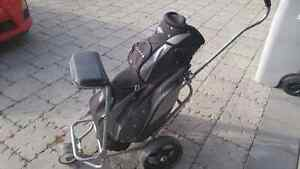 Golf bag with trolley. Perfect condition.