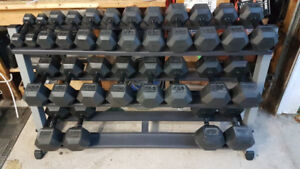 Element Fitness Rubber Hex Dumbbell Set 6-60lbs+ Body-Solid Rack