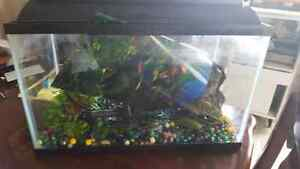 Fish tank ready to go