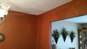 Looking for a experienced painter! London Ontario image 8