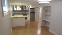 Quiet & Bright 1 bdrm basement (unfurnished)- Queensway/Parklawn
