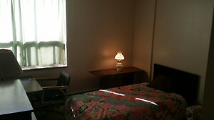 Spacious Apartment to share with just one other Kitchener / Waterloo Kitchener Area image 4