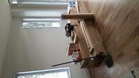 plancher merisier