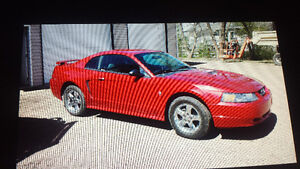 REDUCED to $3500  2002 Ford Mustang V-6