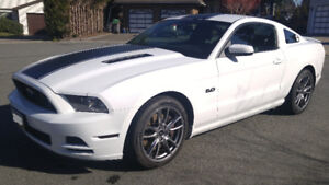 Low mileage 2014 Ford Mustang GT with Track Pack