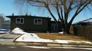 Executive Style - Bungalow Home For Rent (4 Bed)  - May 1st