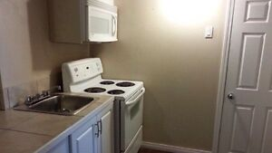 Pet friendly Two bedroom basement suite for rent in Thickwood