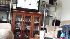 TV stand / cabniet
