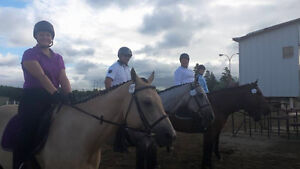 Riding Lessons....english or western