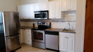 Beautiful Newly Renovated  1 bedroom apartment in St Boniface