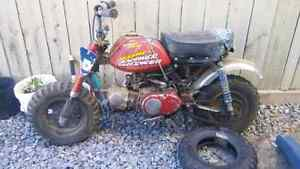 Project honda mini z50
