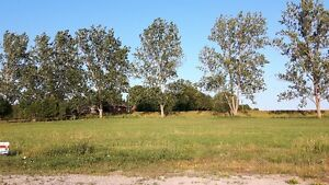 Build your own home on .46 acre lot! Kitchener / Waterloo Kitchener Area image 6