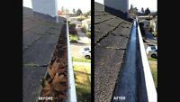 EAVESTROUGH cleaning services for you!