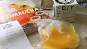 Kombucha Mother Organic SCOBY Starter Kit